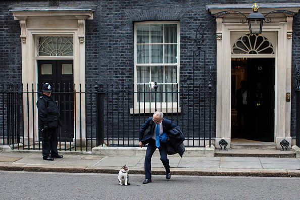 Tabby Cat「Theresa May Hosts Japanese Businessmen At Roundtable Talks」:写真・画像(16)[壁紙.com]