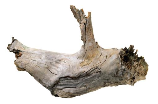 Driftwood「Driftwood」:スマホ壁紙(5)