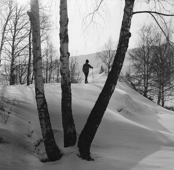 Ski-Wear「Norwegian Skier」:写真・画像(6)[壁紙.com]