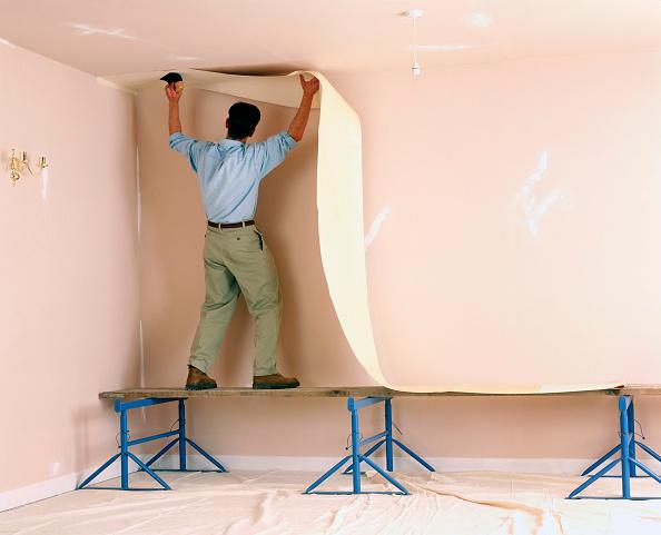Renovation「Handyman hanging wallpaper」:写真・画像(14)[壁紙.com]
