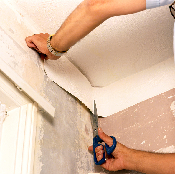 Renovation「Handyman hanging wallpaper」:写真・画像(17)[壁紙.com]