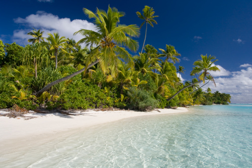 Aitutaki Lagoon「Aitutaki in the Cook Islands 」:スマホ壁紙(10)