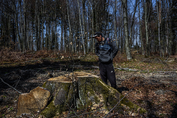 Business Finance and Industry「Activist Blockade To Save Poland's Carpathian Forest From Logging」:写真・画像(8)[壁紙.com]