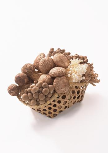 ヒラタケ「Mushroom」:スマホ壁紙(15)