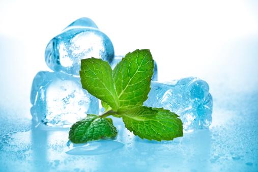 Mint Leaf - Culinary「cool mint」:スマホ壁紙(8)