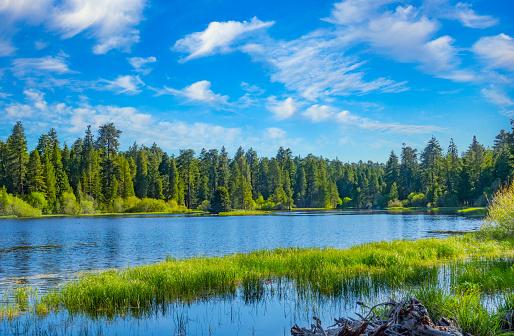 リゾート「大きなベア湖のサンバーナーディーノ国立の森、CA でブラフ湖」:スマホ壁紙(19)
