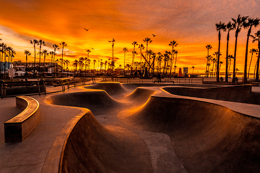 Skateboard「Golden hour shot of skate park at Venice Beach, Los Angeles, California」:スマホ壁紙(8)