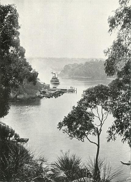 Steamboat「Mosmans Bay」:写真・画像(12)[壁紙.com]