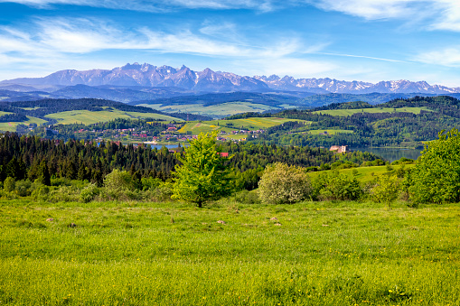 Weekend Activities「Holidays in Poland - summer view from the Podhale region to the Tatra Mountains」:スマホ壁紙(9)
