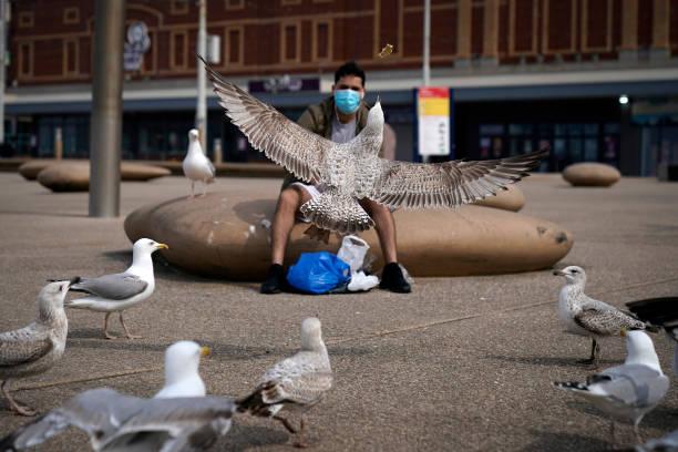 Britain Celebrates Easter Under Coronavirus Lockdown:ニュース(壁紙.com)