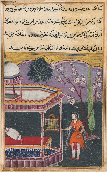 Empire「Page From Tales Of A Parrot (Tuti-Nama): Eighth Night: The Parrot Addresses Khujasta...」:写真・画像(11)[壁紙.com]