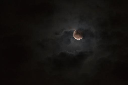 Horror「Moon glowing in night sky」:スマホ壁紙(9)