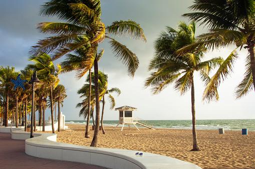 Beach「Fort Lauderdale Beach, Florida」:スマホ壁紙(12)
