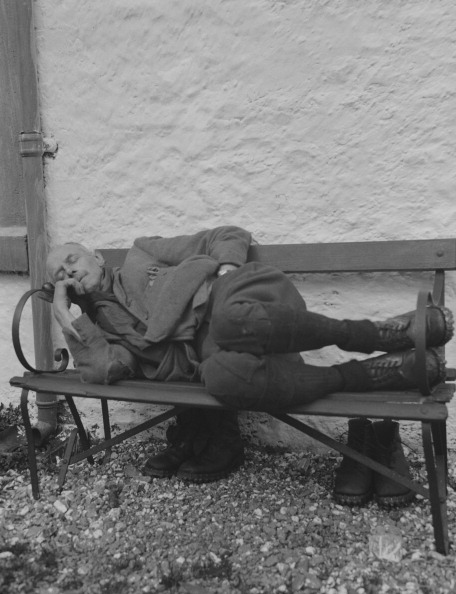Curled Up「Old Man Asleep On Bench」:写真・画像(16)[壁紙.com]