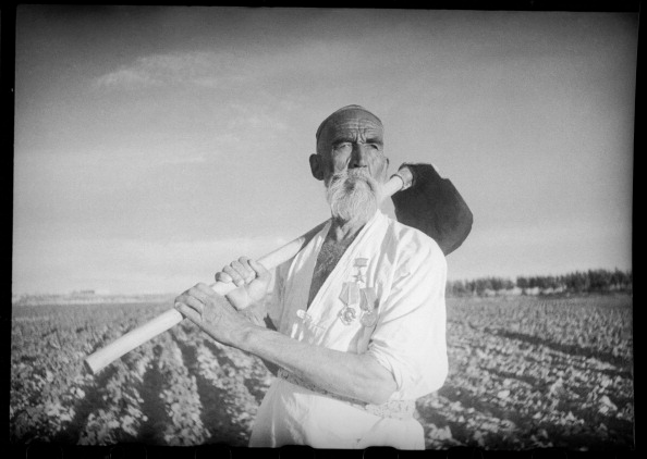 Skull Cap「Labor Hero」:写真・画像(4)[壁紙.com]