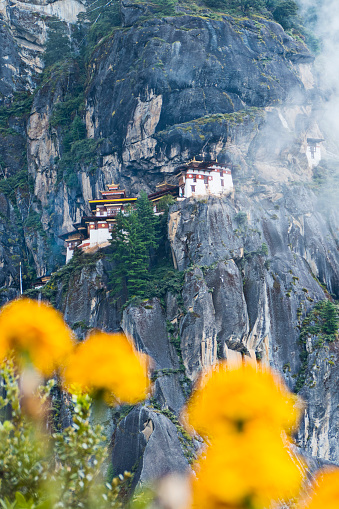 Himalayas「The Tigers Nest with Clouds & Flowers in Bhutan.」:スマホ壁紙(11)