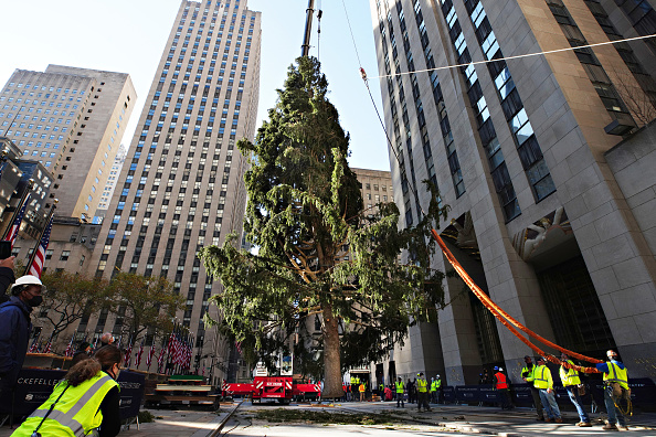 Tree「2020 Christmas Tree Delivered To Rockefeller Center For Holiday Season」:写真・画像(9)[壁紙.com]