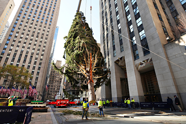 Tree「2020 Christmas Tree Delivered To Rockefeller Center For Holiday Season」:写真・画像(19)[壁紙.com]