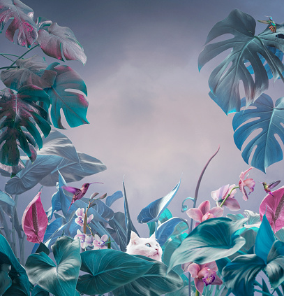 Art And Craft「Surreal tropical background」:スマホ壁紙(18)