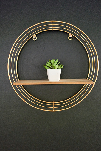 Pretoria「Flowerpot on wooden board, black wall with golden frame」:スマホ壁紙(14)