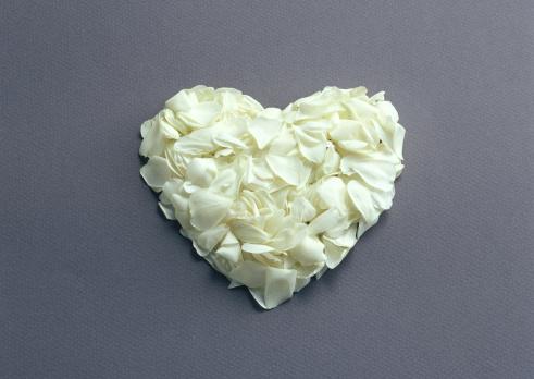 花「Rose」:スマホ壁紙(3)