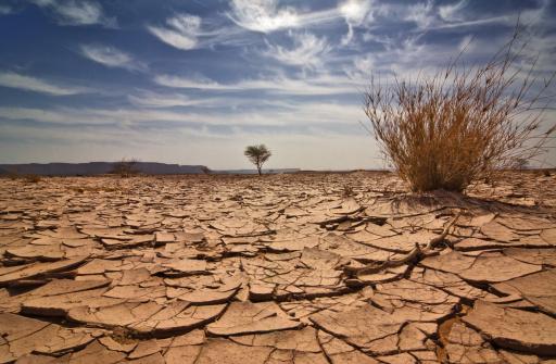 Nature「Libya」:スマホ壁紙(14)