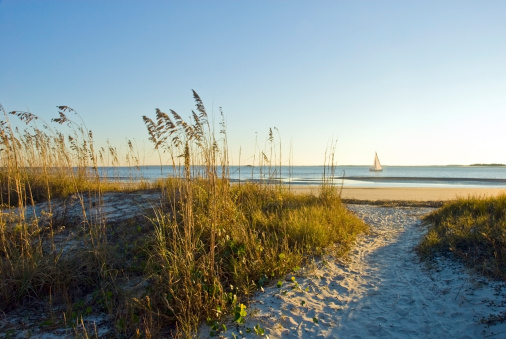 South Carolina「A sand pathway leads to the beach with a sailboat in the background on Hilton Head Island, SC.」:スマホ壁紙(13)