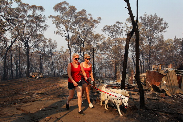 Lisa Maree Williams「Residents Returned To Destroyed Homes As Bushfire Conditions Worsen In NSW」:写真・画像(0)[壁紙.com]
