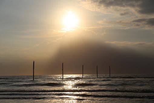 海「logs at the sea at sunset」:スマホ壁紙(5)