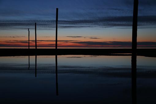 海「logs at the sea at sunset」:スマホ壁紙(8)