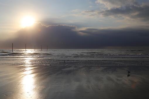 海「logs at the sea at sunset」:スマホ壁紙(4)
