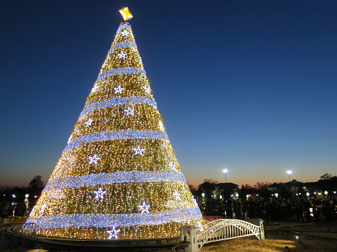 Glowing「National Christmas Tree, Washington DC, USA」:スマホ壁紙(16)
