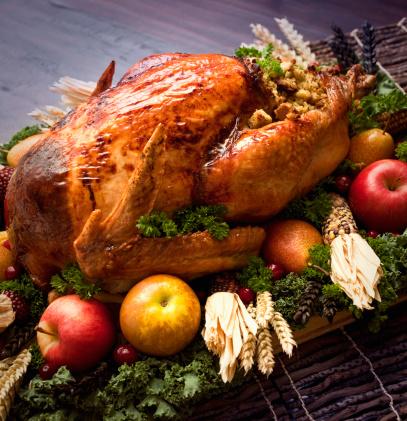 Stuffed Turkey「Roasted Turkey on a Plate with Fruits」:スマホ壁紙(13)