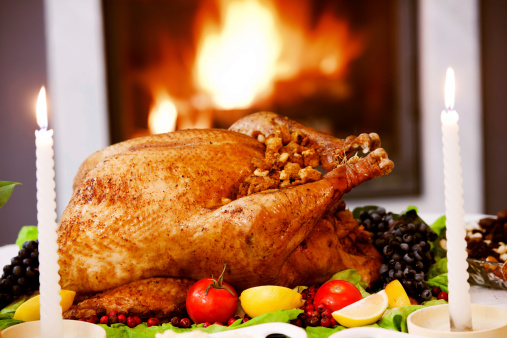 Stuffed Turkey「Roasted Turkey against the fireplace.」:スマホ壁紙(11)