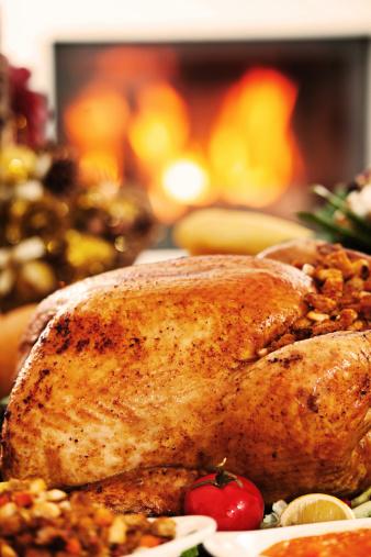 Stuffed Turkey「Roasted Turkey against the fireplace.」:スマホ壁紙(1)
