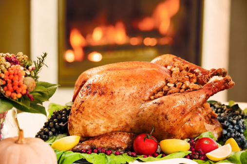 Sepia Toned「Roasted Turkey against the fireplace」:スマホ壁紙(17)