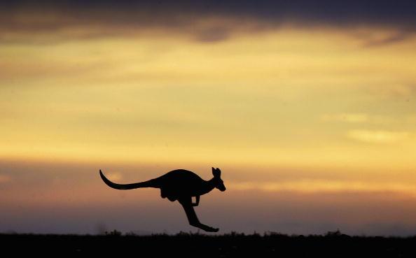 オーストラリア「Explore The Australian Outback」:写真・画像(4)[壁紙.com]