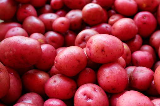 Red Potato「New red potatoes for sale in a farmers market」:スマホ壁紙(16)