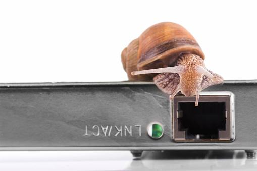 snails「Fast net」:スマホ壁紙(16)