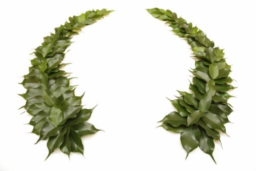 Success「Green wreath」:スマホ壁紙(13)