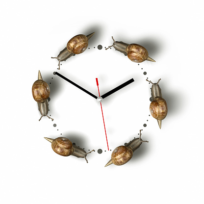 Hour Hand「Snails crawling around a clock」:スマホ壁紙(18)