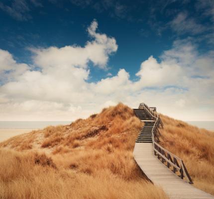 Footpath「Way through the dunes」:スマホ壁紙(16)