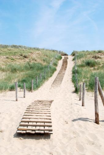 Netherlands「Way through the dunes」:スマホ壁紙(18)