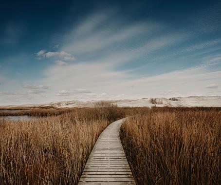 Footpath「Way through the dunes」:スマホ壁紙(10)