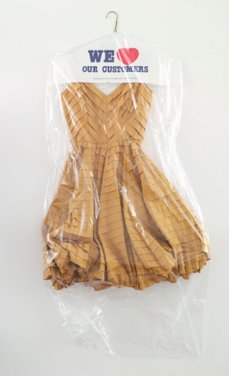 Wrapped「Party Dress in Drycleaning Bag」:スマホ壁紙(2)
