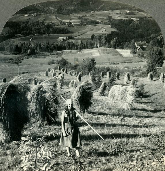 Rake「A Telemarken Harvest Scene Near Saude」:写真・画像(7)[壁紙.com]