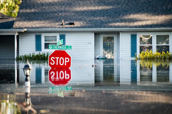 South Carolina「Flooding Inundates South Carolina Nearly 2 Weeks After Hurricane Florence Struck」:写真・画像(5)[壁紙.com]