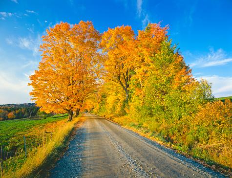 秋「秋のカントリーサイドでバーモント」:スマホ壁紙(5)