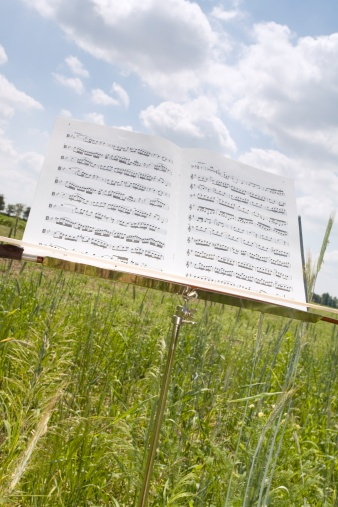 Classical Musician「Sheet music on stand in corn field, close-up」:スマホ壁紙(5)