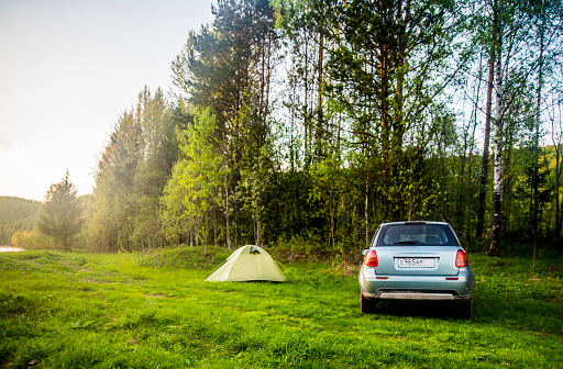 Forest「Car and tent at campsite in field」:スマホ壁紙(6)